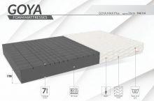 Goya Max Plus