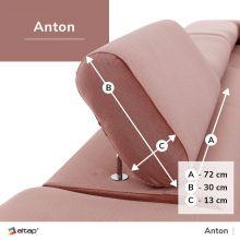 Anton Standard
