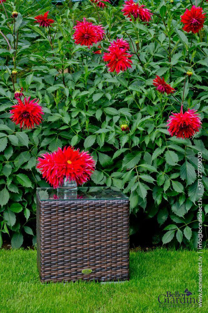 Dārza galds Bello Giardino 2