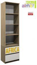 Africa C10